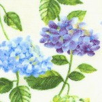 Hydrangeas - Tossed Flowers on Green