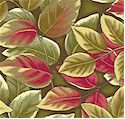 FLO-leaves-M602