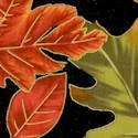 FLO-leaves-U631