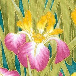 Lotus in Springtime - Gilded Irises #1