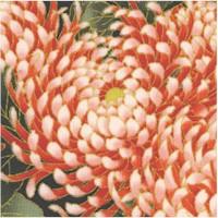 Mt. Fuji - Nobu Fujiyama Magnificent Gilded Chrysanthemums