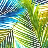 Birds in Paradise - Colorful Palm Fronds by Lisa Sparling