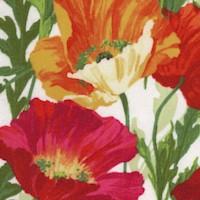FLO-poppies-R87