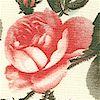 FLO-roses-K990