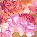 Paper Roses by Beverlyann Stillwell