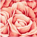 Rose Whispers - Luscious Packed Roses in Peach by Cedar West