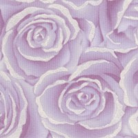 Love is in the Air - Lavender Roses with Pearlescent Silver Highlights