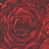 FLO-roses-R259