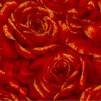 Cardinal Carols - Dramatic Gold-Dusted Packed Roses