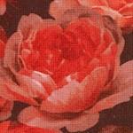 FLO-roses-W729