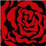 FLO-roses-X420