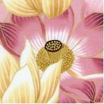 Sanctuary II - Nobu Fujiyana Gilded Lotus #2