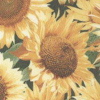 Photo Real Sunflowers by Patty Reed Designs - SPECIAL! LTD. YARDAGE AVAILABLE (.625 YD) - MUST BE PU