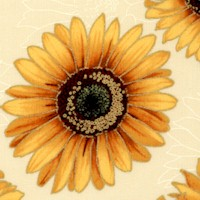 Shades of the Season 8 - Gilded Tossed Sunflowers