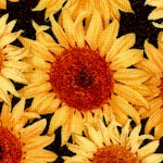 FLO-sunflowers-W426