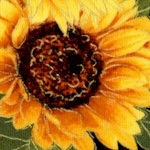 FLO-sunflowers-W627
