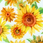 FLO-sunflowers-Y487
