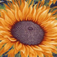 Here Comes the Sun - Gilded Large Blooming Sunflower