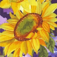 Sunny Fields - Brilliant Sunflowers and Daisies by Sue Zipkin