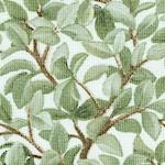 Beautiful Birds - Soft Pastel Foliage