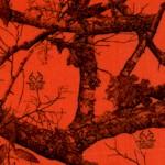 Real Tree Edge - Blaze Camouflage