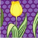 FLO-tulips-P523
