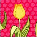 FLO-tulips-P526