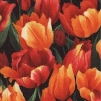 Lovely Packed Tulips