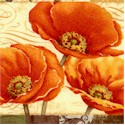 Windflower - Beautiful Poppy Collage by Daphne B.