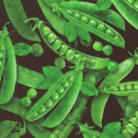 Fresh - Tossed Peas in the Pod on Black by Dan Morris