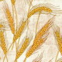 Making Hay - Wheat Field on Beige by Dan Morris