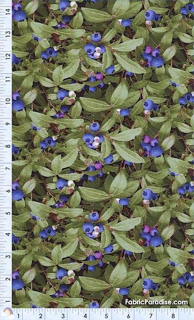 FB-blueberry-K311