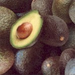 Food Festival - Real Avocados Up Close