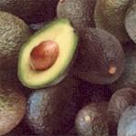 FB-avocado-Y867