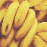 Farmer's Market - Packed Bunches of Bananas