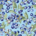 Teacups and Roses - Wild Blueberries on Blue by Carol Wilson