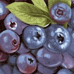 Farmer John's Organic Blueberries