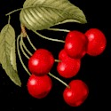 FB-cherries-S956