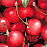 Farmer John's Organic Cherries