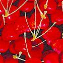FB-cherry-M180