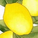 Luscious Lemon Vertical Stripe