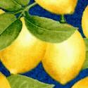 FB-lemons-S577
