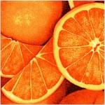 Farmer's Market - Packed Oranges