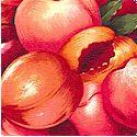 FB-peaches-L587