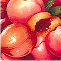 Farmer John's Market - Packed Juicy Peaches-BACK IN STOCK!