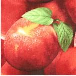FB-peaches-X422