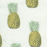 Fern Garden - Pineapples