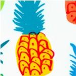 FB-pineapples-X53