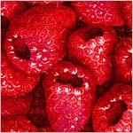 Farmer's Market - Packed Raspberries