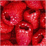 FB-raspberries-X791